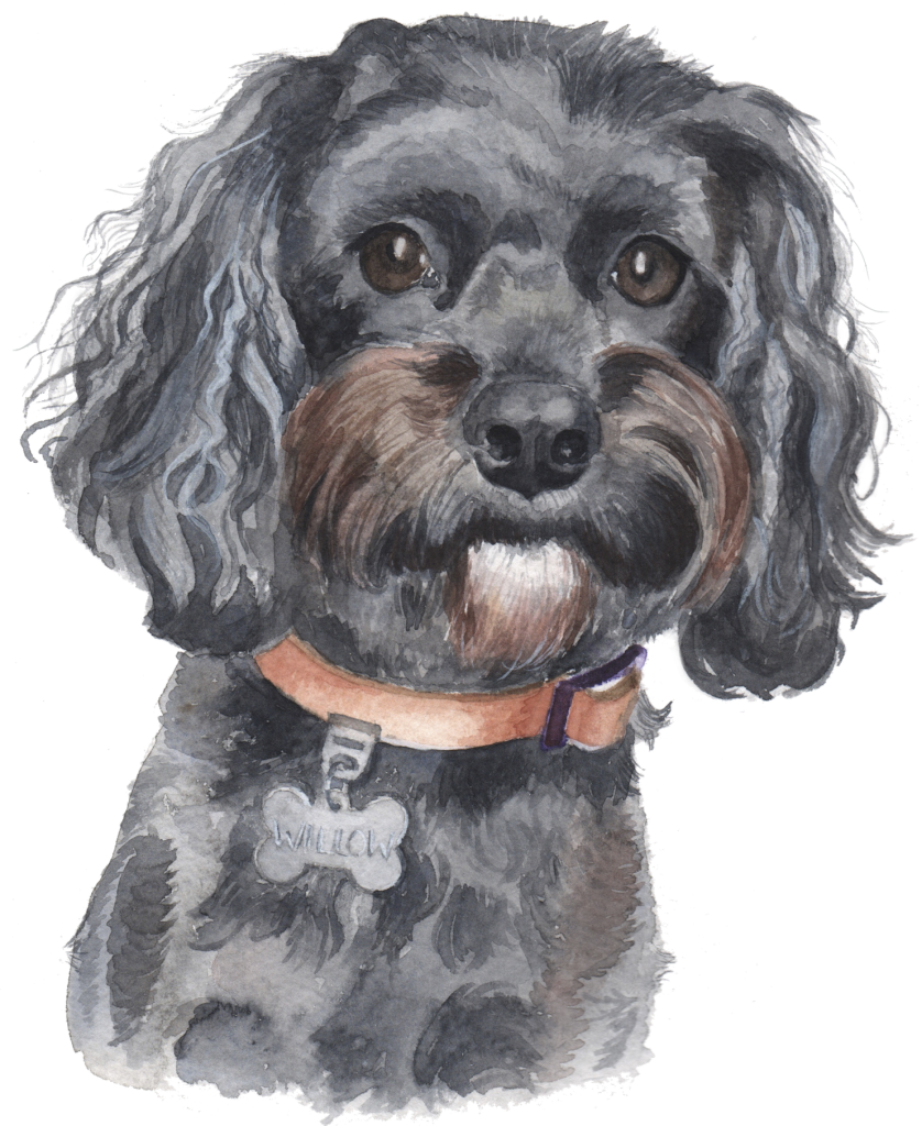 Pet portrait artist UK