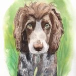 Pet portraits watercolour