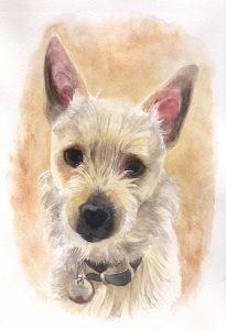 Pet portraiture UK