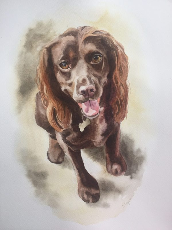 Watercolour pet portrait artist