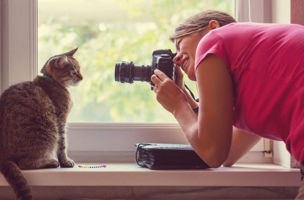 Watercolour pet portraits from photos