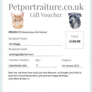 Pet portrait gift voucher