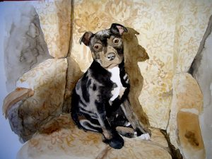 commission pet portrait artist