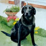 Dog portrait artist