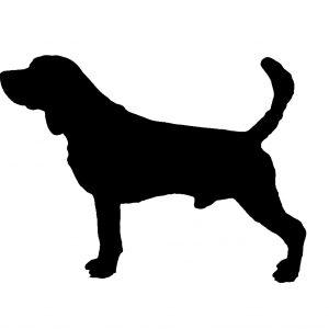 Dog portrait artist UK