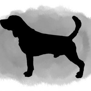 Single dog portrait watercolour wash background