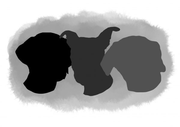 Dog portrait of heads