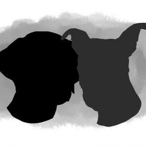 Watercolour dog portrait heads
